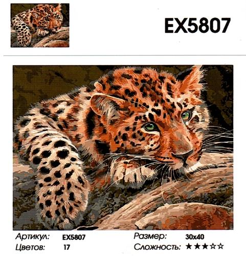 """РЗ EХ5807 """"Леопард лежит """", 30х40 см"""
