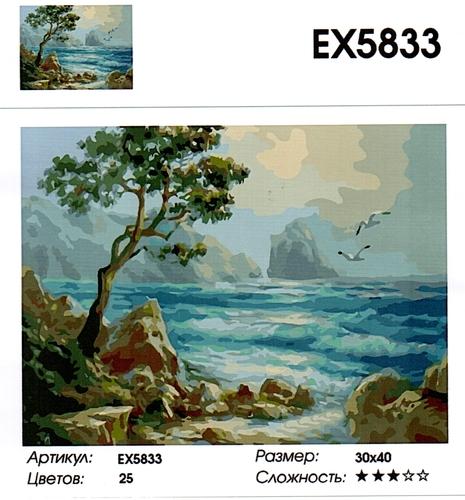 "РЗ EХ5833 ""Море, скалы, чайки"", 30х40 см"