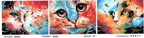 "РТ РХ5193 ""Цветные кошки"", 40х50х3"