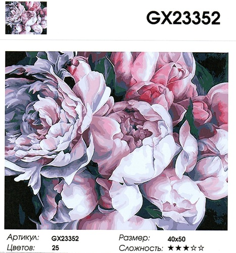 """GX23352 """"Бело-розовые пионы"""", 40х50 см"""