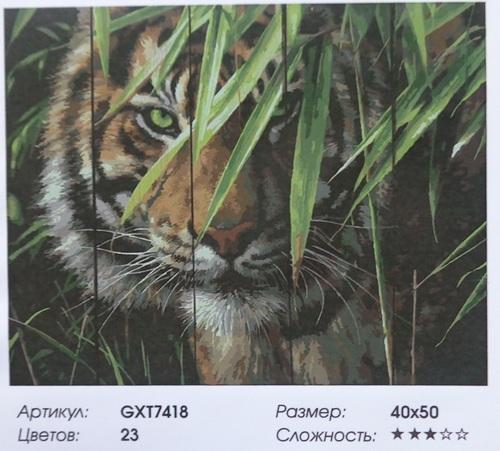 "РД GXT7418 ""Тигр в траве"", 40х50 см"