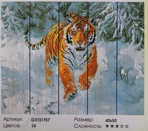 "РД GXT21757 ""Тигр бежит по снегу"", 40х50 см"