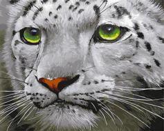 """РН GX23543 """"Белый тигр с зелеными глазами"""", 40х50 см"""