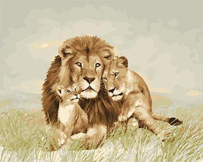 """РН GX23803 """"Семья львов на траве"""", 40х50 см"""