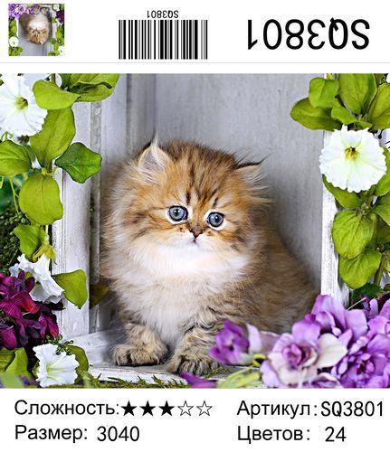 """РЗ SQ3801 """"Котенок в ящике, в цветах"""", 30х40 см"""
