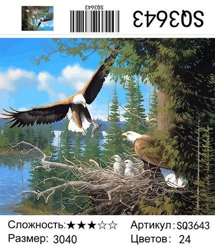 "РЗ SQ3643 ""Семья беркутов"", 30х40 см"