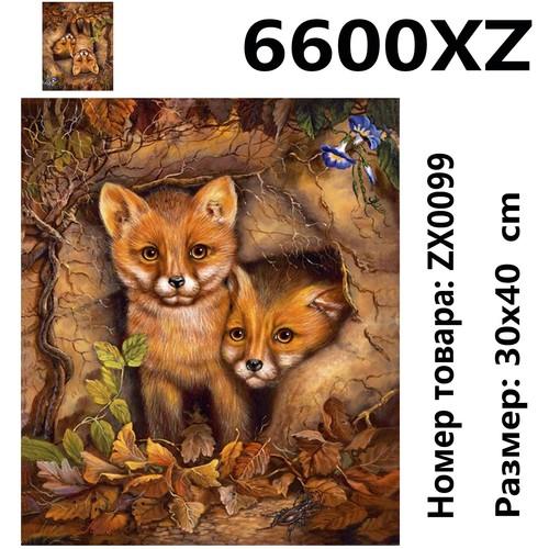 """АМ34 ZX0099 """"Лисята"""", 30х40 см"""
