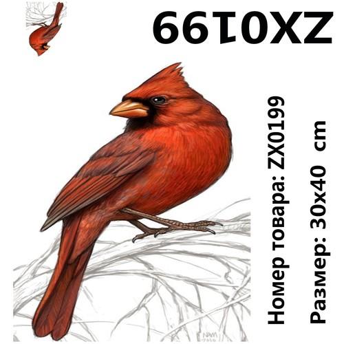 """АМ34 ZX0199 """"Красный удод"""", 30х40 см"""