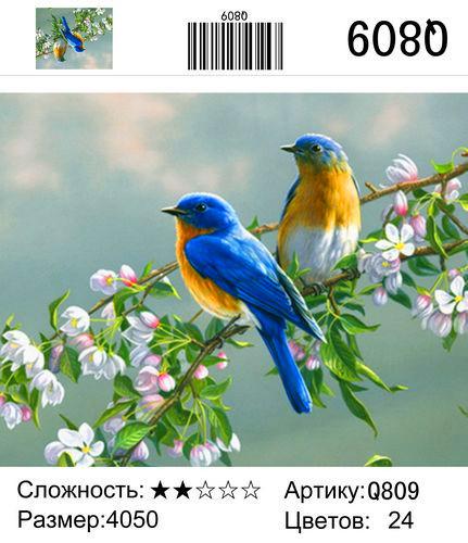 """РН Q809 """"Две птички на ветке"""", 40х50 см"""