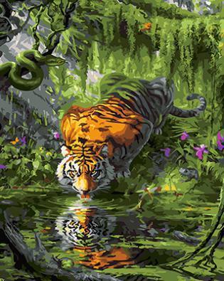 """РН GX24841 """"Тигр лакает воду"""", 40х50 см"""