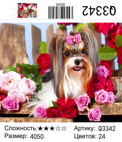 "РН Q3342 ""Модный йорк"", 40х50 см"