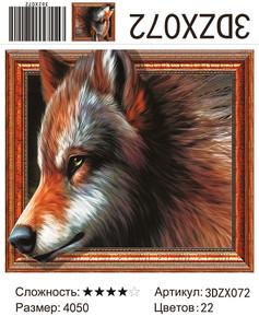 """АМ3D 072 """"Рыжий волк"""", 40х50"""