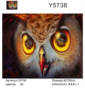 """РН Y5738 """"Желтые глаза совы"""", 40х50 см"""