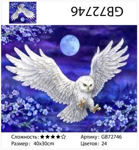 """АМ34 GB72746 """"Белая сова в ночи"""", 30х40 см"""