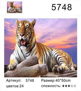 "РД 5748 ""Тигр лежит"", 40х50 см"