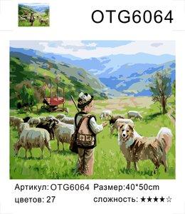 "РН OTG6064 ""Мальчик-пастух"", 40х50 см"