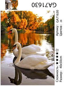 """АМ45 GA71630 """"Два лебедя осенью"""", 40х50 см"""
