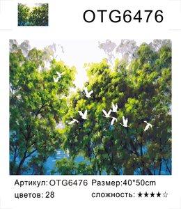 """РН OTG6476 """"Лебеди на фоне деревьев"""", 40х50 см"""