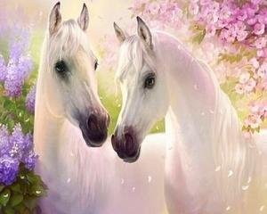 """ВК1054 """"Две белых лошади"""" 39х48 см"""