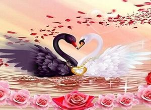 """ВК1957 """"Пара лебедей с золотым сердцем"""" 39х48 см"""