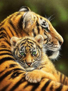 "АМ45 LAG1378 ""Тигрица с тигренком"", 40х50 см"
