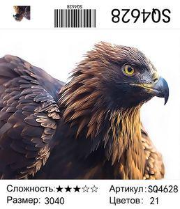 РЗ SQ4628, 30х40 см