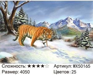 АБП45 WX50165, 40х50 см