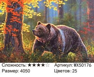 АБП45 WX50176, 40х50 см