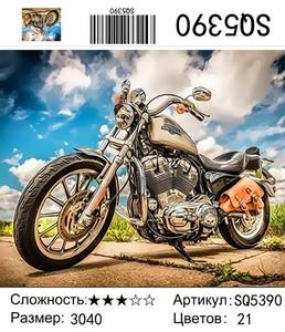 РЗ SQ5390, 30х40 см