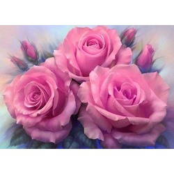 """РН GХ7903 """"Розовые розы"""", 40х50 см"""