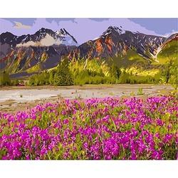 """РН GХ3346 """"Розовое поле у подножья горы"""", 40х50 см"""