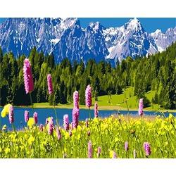 """РН GХ3141 """"Горы, лес, озеро"""", 40х50 см"""
