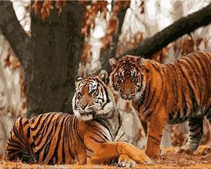 """РН GХ4443 """"Два тигра в осеннем лесу"""" , 40х50 см"""