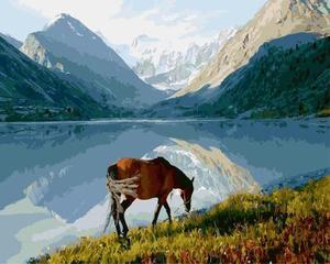 """РН GX5245 """"Конь у горного озера"""", 40х50 см"""