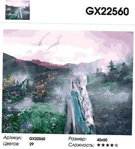"РН GX 22560 ""Пойдем в туманное поле"", 40х50 см"