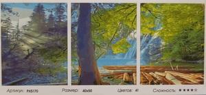 "РТ РХ5170 ""Лес, озеро"", 40х50х3"