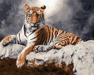 """РН GX23817 """"Тигр лежит под луной"""", 40х50 см"""