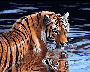 """РН GX23890 """"Тигр в воде"""", 40х50 см"""