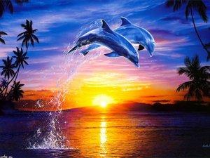 "АРС ""Два дельфина над водой на закате"", 40х50 см"