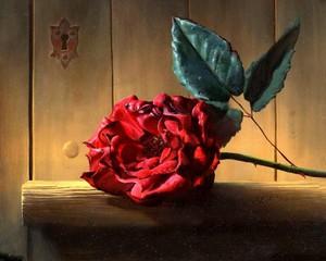 "АРС12148 ""Красная роза у замочной скважины"", 40х50 см"