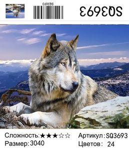 "РЗ SQ3693 ""Волк лежит у камня"", 30х40 см"