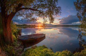 """РН GX24677 """"Лодка на реке под деревом"""", 40х50 см"""