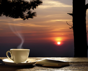 "РН GX24515 ""Кофе на фоне заката"", 40х50 см"