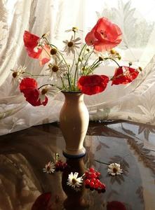 """РН GX24596 """"Маки с ромашками в белой вазе на столе"""", 40х50 см"""