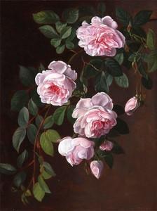 """РН GX24639 """"Розовые розы на ветке"""", 40х50 см"""
