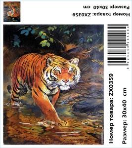 "АМ34 ZX0359 ""Тигр идет по ручью"", 30х40 см"