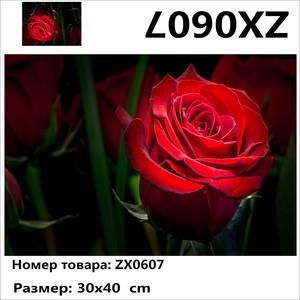 """АМ34 ZX0607 """"Красная роза в ночи"""", 30х40 см"""