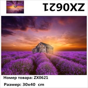 "АМ34 ZX0621 ""Сиреневые грядки вокруг домика"", 30х40 см"
