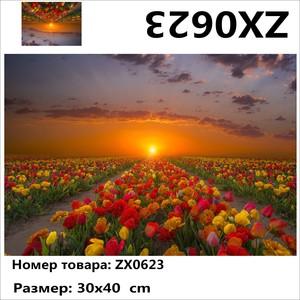 """АМ34 ZX0623 """"Тюльпаны на закате"""", 30х40 см"""