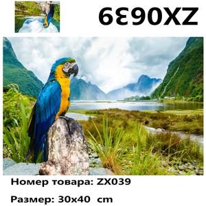 """АМ34 ZX0639 """"Попугай на пне у озера"""", 30х40 см"""